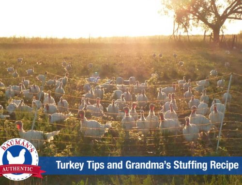 ROSANNA'S TURKEY TIPS